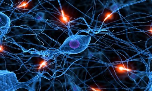 развитие заболеваний нервной системы